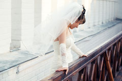 Gorgeous bride Royalty Free Stock Image