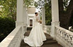 Gorgeous bride with dark hair wears elegant wedding dress Stock Photo