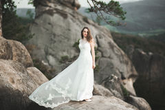 Gorgeous bride in elegant dress holding bouquet posing near forest Stock Photography