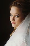 Gorgeous bride elegant portrait in the morning soft light. sensu Stock Photos