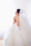Gorgeous bride Royalty Free Stock Photography