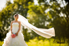 Gorgeous bride on her wedding day Royalty Free Stock Images