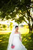 Gorgeous bride on her wedding day Stock Images