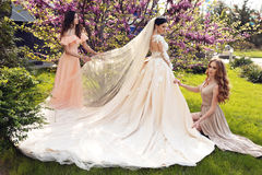 Gorgeous bride in luxurious wedding dress, posing with beautiful bridesmaids in elegant dresses. Fashion outdoor photo of gorgeous bride in luxurious wedding royalty free stock photography