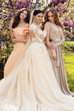 Gorgeous bride in luxurious wedding dress, posing with beautiful bridesmaids in elegant dresses. Fashion outdoor photo of gorgeous bride in luxurious wedding royalty free stock image