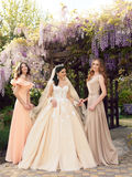 Gorgeous bride in luxurious wedding dress, posing with beautiful bridesmaids in elegant dresses. Fashion outdoor photo of gorgeous bride in luxurious wedding stock images