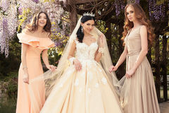 Gorgeous bride in luxurious wedding dress, posing with beautiful bridesmaids in elegant dresses. Fashion outdoor photo of gorgeous bride in luxurious wedding stock photography