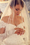 Gorgeous bride in luxurious wedding dress and veil. Fashion outdoor photo of gorgeous bride in luxurious wedding dress and veil stock photo