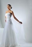 Gorgeous bride portrait posing in studio Stock Photo