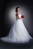 Gorgeous bride posing in elegant dress Stock Photo