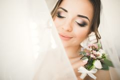 Gorgeous bride in robe posing and preparing for the wedding ceremony face in a room Royalty Free Stock Images