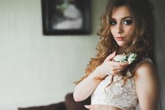 Gorgeous bride in robe posing and preparing for the wedding ceremony face in a room Stock Photography