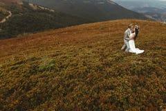Gorgeous bride and stylish groom hugging,  boho wedding couple, Royalty Free Stock Photos