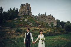 Gorgeous bride and stylish groom walking at sunny landscape, wed stock images