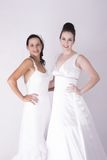 Gorgeous Brides wearing white smiling and excited Royalty Free Stock Image