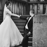 Gorgeous brunette bride and confident groom holding hands on old. Stone stairs b&w Royalty Free Stock Photography