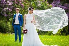 Gorgeous brunette bride in elegant dress posing in sunny park stock image