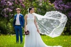 Gorgeous brunette bride in elegant dress posing in sunny park royalty free stock photo