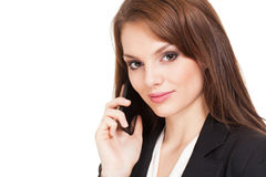 Gorgeous brunette businesswoman. Royalty Free Stock Images