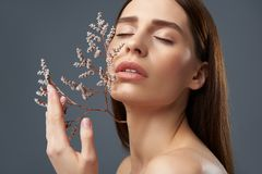 Gorgeous brunette girl holding beautiful sprigs with white flowers near her face royalty free stock photo