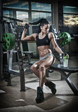 Gorgeous brunette lifting some weights and working on her biceps in a gym. Fitness woman doing workout. Sporty girl doing exercise Stock Image