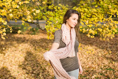 Gorgeous brunette posing in the park. Gorgeous brunette posing in the park at fall Stock Image
