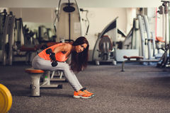 Gorgeous brunette working on her biceps in a gym Stock Images