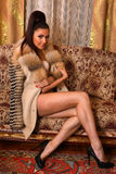 Gorgeous brunette young woman wearing lingerie and fur coat posing on a couch Stock Images