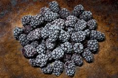 Beautiful frozen blackberries on a rustic pan royalty free stock image