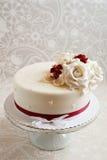 Gorgeous cake Royalty Free Stock Image