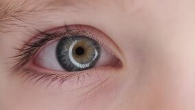 Close up of coloured eye of kid blinking. Gorgeous coloured eye of a kid looking at the camera stock video footage