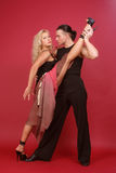 Gorgeous couple dancing argentine tango. On red background Royalty Free Stock Photography