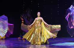 Gorgeous Dance Costume-Turkey belly dance-the Austria's world Dance Stock Images