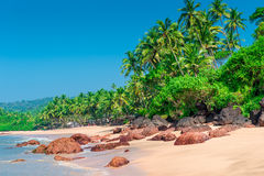 Gorgeous deserted tropical beach Stock Image