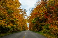Fall road in Pictured Rocks National Lakeshore, Munising, MI, US. Gorgeous display of fall colors, leaves, red, orange, green and yellow trees with both side of Royalty Free Stock Images