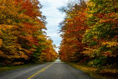 Fall road in Pictured Rocks National Lakeshore, Munising, MI, US. Gorgeous display of fall colors, leaves, red, orange, green and yellow trees with both side of Royalty Free Stock Photos
