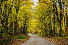Fall road in forest of Pictured Rocks National Lakeshore Munisin. Gorgeous display of fall colors, leaves, red, orange, green and yellow trees coverd empty road Stock Image