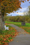 Gorgeous Fall day with peaceful path through the woods Royalty Free Stock Photo