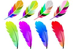 Fancy Colored Feathers Stock Image