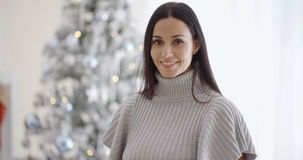 Gorgeous fashionable young woman at Christmas Stock Photography