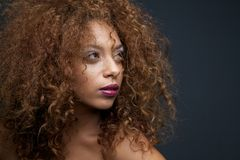 Gorgeous female fashion  model with curly hair Royalty Free Stock Image