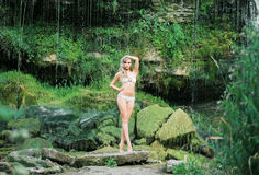 Gorgeous, fit lady in alluring bikini posing next to a waterfall Stock Images