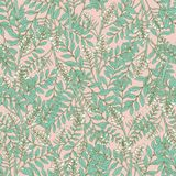 Gorgeous floral seamless pattern with acacia inflorescences and leaves. Tender blooming white flowers on pink background Royalty Free Stock Photography