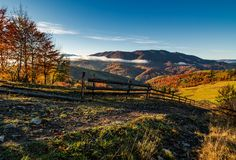 Gorgeous foggy morning in mountainous countryside. Beautiful landscape with wooden fence and trees with yellow foliage near the rural fields on hillsides in Royalty Free Stock Photo