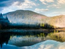 Gorgeous foggy sunrise on the lake in forest Royalty Free Stock Photo