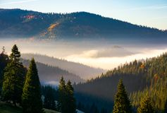 Gorgeous foggy sunrise in mountains. Beautiful autumn scenery of Apuseni Natural Park in Romania stock photography