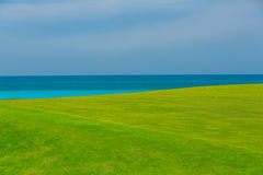 Gorgeous fresh green grass field against tranquil ocean and blue sky background. Fragment of amazing, gorgeous fresh green grass field against tranquil ocean and Royalty Free Stock Images