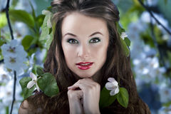 Gorgeous girl with flowers in hair, proffesional make up Stock Image