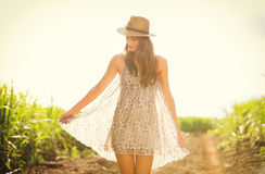 Gorgeous girl walking in the field, Summer Lifestyle. Gorgeous girl walking in the field.  Happy, carefree summer lifestyle.  Woman wearing stylish sun dress Royalty Free Stock Image