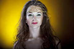 Gorgeous girl on yellow background, proffesional make up, artist Stock Image